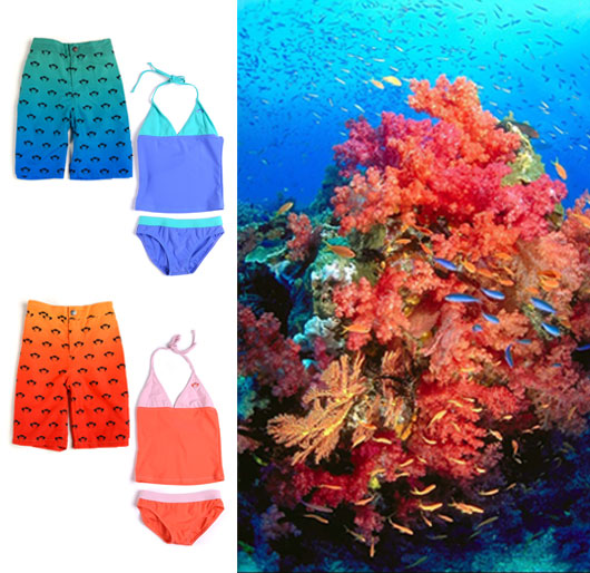 Tankini Sets in Huckleberry and Coral' Logo Swim Shorts in Seagrass and Mandarin